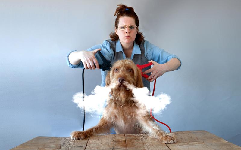 De hond die licht gaf - Kim van Zeben - Foto: Esther de Boer